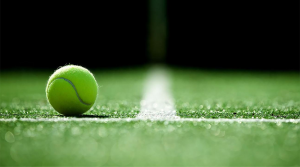 House Rentals in Wimbledon London