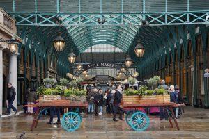 London Holiday Rental in Wimbledon